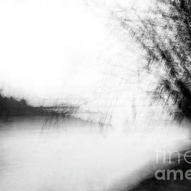 Down by the River by Renata Natale