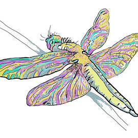 Dragonfly by Marshal James