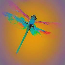 Dragonfly Transformation by Elizabeth Pennington
