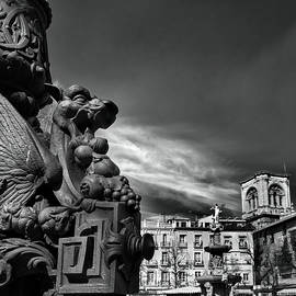 Dragons. Bip Rambla details. BW by Guido Montanes Castillo
