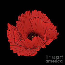 Dramatic Red Poppy Flower Floral by Tina Lavoie