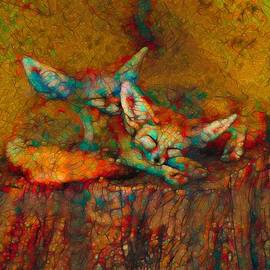 Dream Time Fennec Foxes by Joan Stratton