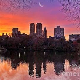 Dreaming in Pastel - Central Park Sunset - with fog by Miriam Danar