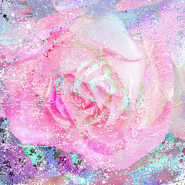 Dreamy Pink Rose by HB Lee