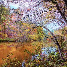 Dressed Up in Autumn Colors by Debra and Dave Vanderlaan
