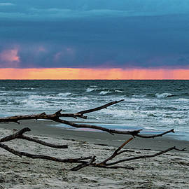 Driftwood and Stormy Seas Panoramic by Mary Ann Artz
