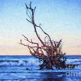 Driftwood At Dusk Painterly by Sharon McConnell
