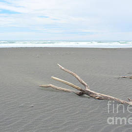 Driftwood Trident