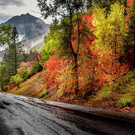 Drive into Fall by David Millenheft