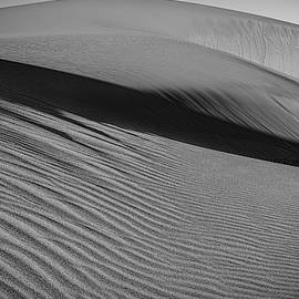 Dune Ripples BW by Angelo Marcialis