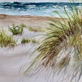 Dunes by Nicole Curreri