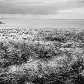Dunworley Headland by Paul Finnegan