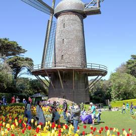 Dutch Windmill In Golden Gate Park by Her Arts Desire