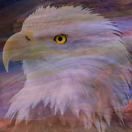 Eagle Eye by Mary Poliquin - Policain Creations