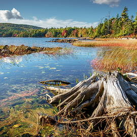 Eagle Lake in Acadia National Park by Alexey Stiop