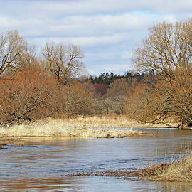Early Spring At Wilson's Flats by Debbie Oppermann