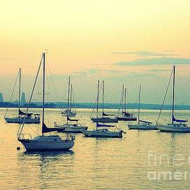 Early Summer Sunset Over the Bay by Dora Sofia Caputo