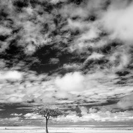 East African plains and clouds infrared vertical by Murray Rudd
