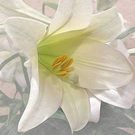 Easter Easter Lily by Luther Fine Art