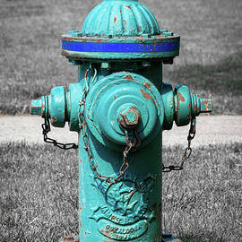 Eddy Valve Co Fire Hydrant by Enzwell Designs