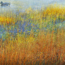 Edge Of The Pond by R christopher Vest