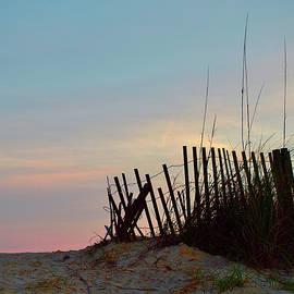 Edisto Island Sunset by Richard Perry