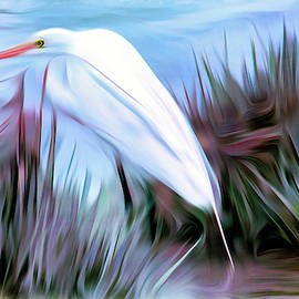 Egret stalking by Geraldine Scull