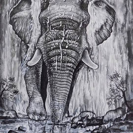 Elephant From The Waterfall by Asp Arts