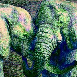 Elephant Love by Michele Avanti