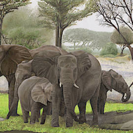 Elephant's in the shade by Russell Hinckley
