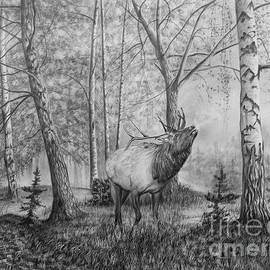 Elk in the Forest by Lena Auxier