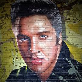Elvis Mural In Tupelo by Toni Abdnour