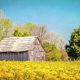 Elysian Acres by Todd Reese