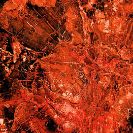 Nova Abstract by Robert Tubesing