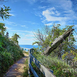 Empire Bluffs Trail 5921 by Linda Dron Photography