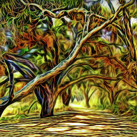 Enchanted Pathway Light by Joel Bruce Wallach