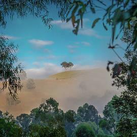 Enchanted Valley by Az Jackson