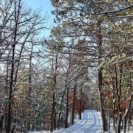 Enjoy the Journey Winter Wonderland by Ann Brown