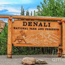 Entering Denali  by Robert Bales