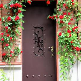Entrance door with red flowers bricks and ornate light post Tbilisi Georgia by Imran Ahmed