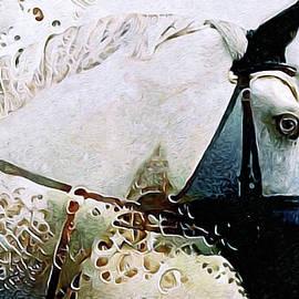 Equus by Susan Maxwell Schmidt