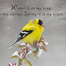 Eternal Spring by Carmen Macuga