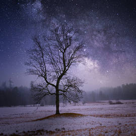 Ethereal Night Square by Bill Wakeley