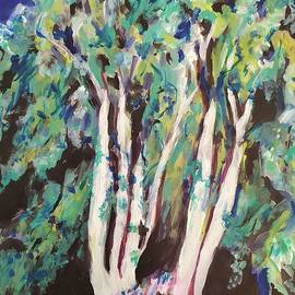 Eucalyptus Trees in Israel by Esther Newman-Cohen