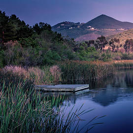 Evening at the Lake  by Alison Frank