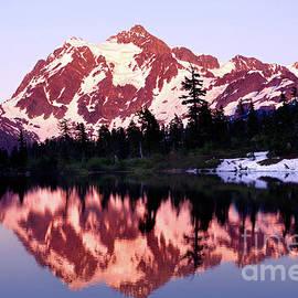 Evening Light, Mount Shuksan by Douglas Taylor