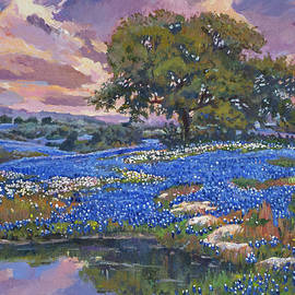 Evening Light Over Boerne Texas by David Lloyd Glover