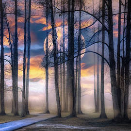 Evening Mystery by Debra and Dave Vanderlaan