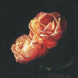 Evening Petals by Celia Messer