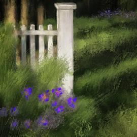 Evening Shadows by Lois Bryan